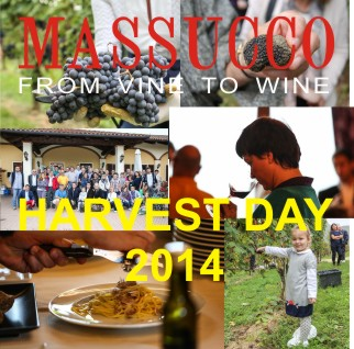 MASSUCCO HARVEST DAY