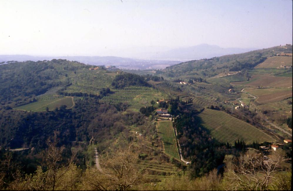Vista dalla Tenuta Montiani