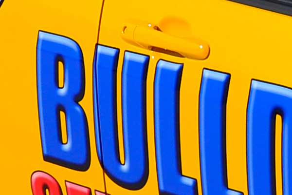 Bull Dog Storage car graphics