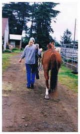 Linda with her beloved mare, Foxy