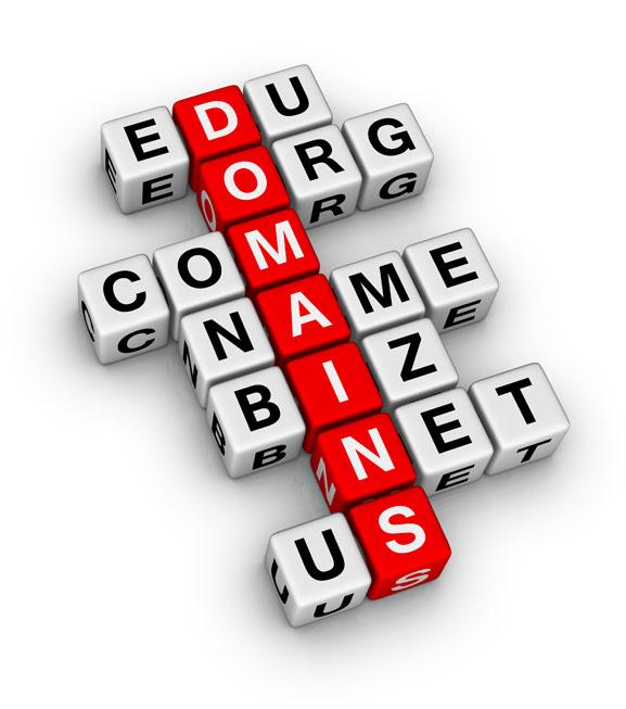 เลือกจดโดเมนนามสกุลต่างๆใหักับเว็บไซต์ของเรา
